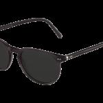lunettes-de-soleil-polo-ralph-lauren-3